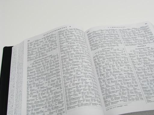 Apostolic Bible Polyglot Greek-English Interlinear